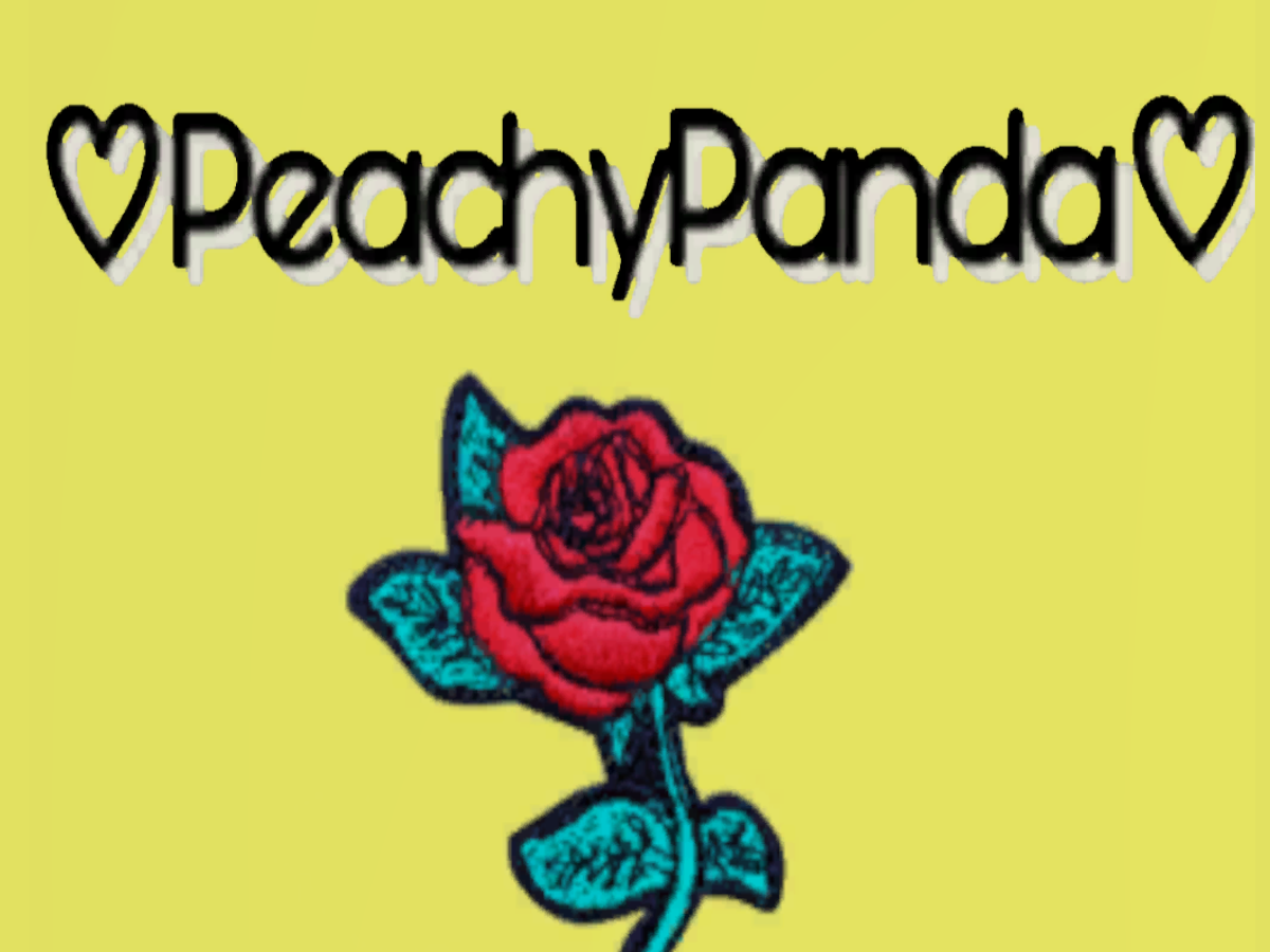 Peachy's Avatar World ˸3